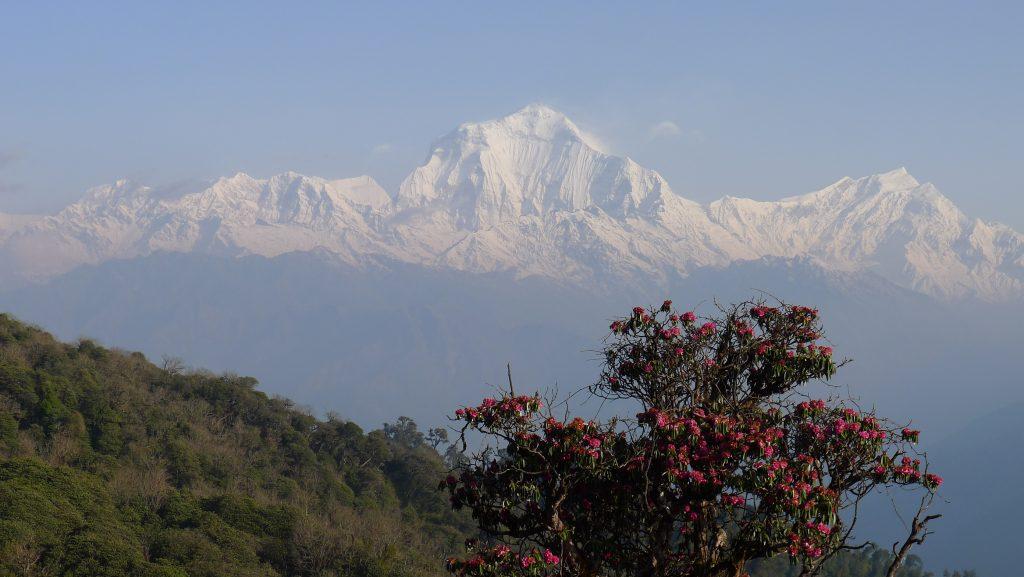 Hike to Nepal